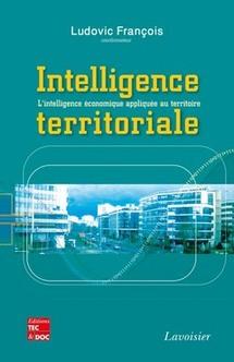 L'intelligence territoriale, expliquée par Ludovic François