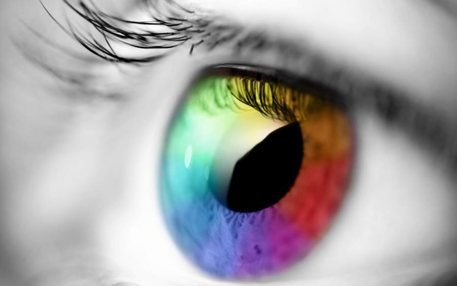 Projet de loi sur les lentilles de contact : quels enjeux ?